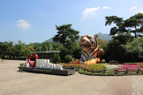 Seoul Zoo, Sky Lift & Straßenbahn-Kombiticket in Elefantenform