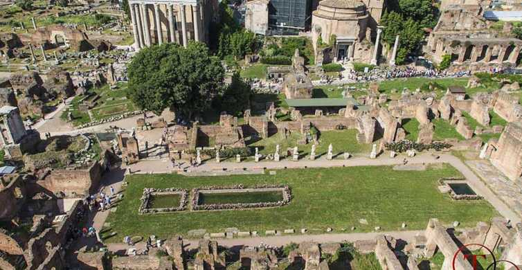 Rome: Private Colosseum, Roman Forum, and Palatine Hill Tour
