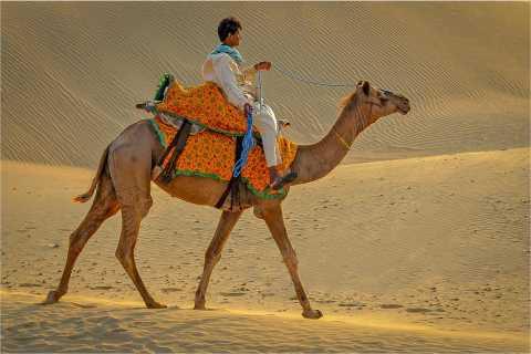 Marrakesh: 3-Day Merzouga Instagram Journey
