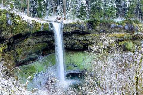 Portland: Silver Falls Hike and Wine Tour