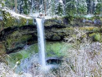 Portland: Silver Falls Wanderung und Weintour