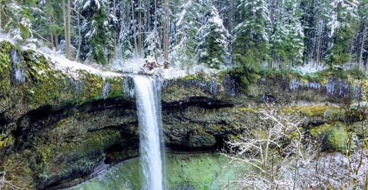 Portland: Silver Falls Hike and Wine Tour