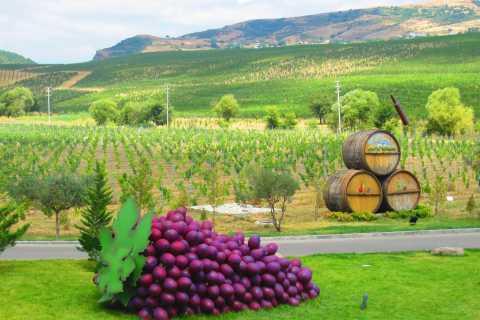 Baku: tour pelas vinícolas orgânicas em Shamakhi com almoço local