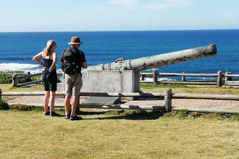 Port Elizabeth: 5-Hour City, Hiking, and Wildlife Experience