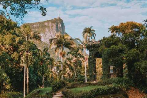 Río de Janeiro: tour del jardín botánico y el bosque Tijuca
