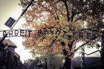 From Krakow: Auschwitz-Birkenau Memorial Private Transfer