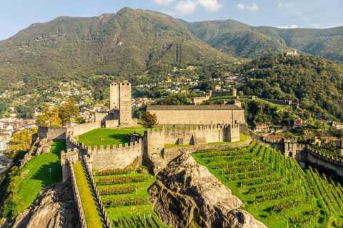 Bellinzona: biglietto per 3 castelli con Villa dei Cedri