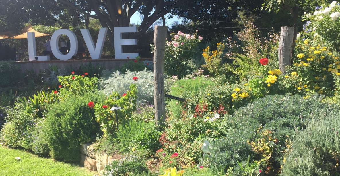 From Adelaide: McLaren Vale Small Group Winery Tour
