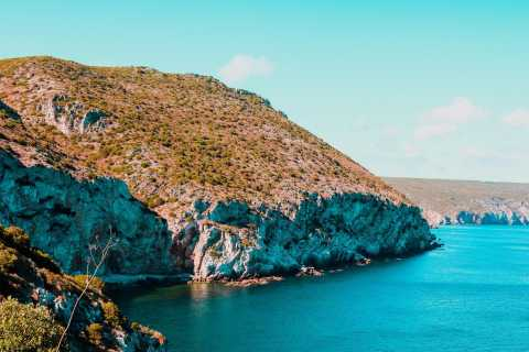 Sesimbra: Arrábida Natural Park Beaches and Caves