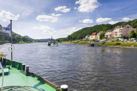 Bad Schandau: 1.5-Hour River Cruise to Königstein Fortress