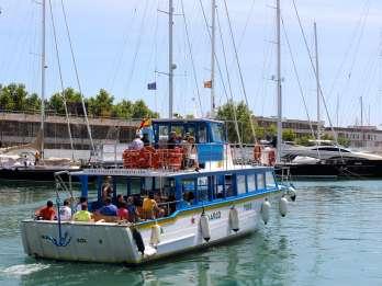 Palma de Mallorca: 1-stündige Besichtigungstour mit dem Boot