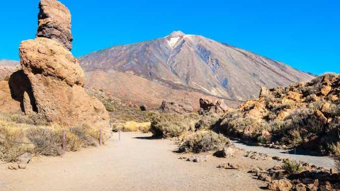 Tenerife: Teide National Park Full-Day Scenic Tour
