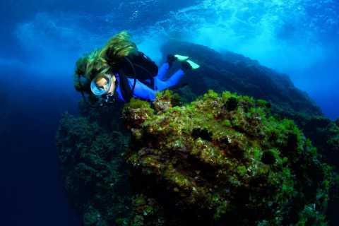 Lisbona: diventa un subacqueo in 3 giorni