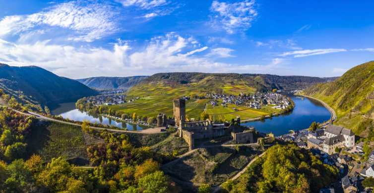 Moselle Valley: Guided Vineyard Tour with Wine Tasting
