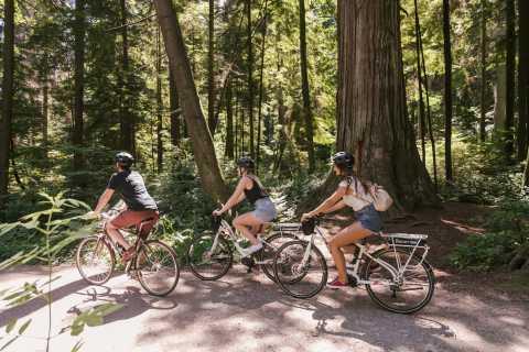 Vancouver: Half-Day City Highlights E-Bike Tour