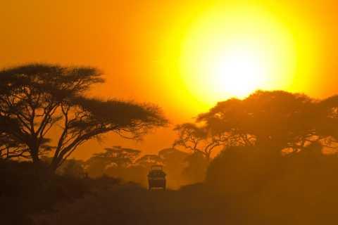 Galle/Unawatuna/Mirissa: Full-Day Yala National Park Safari