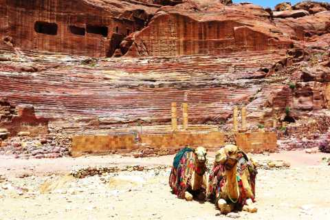 From Amman: Petra & Wadi Rum Day Trip with Hotel Pickup