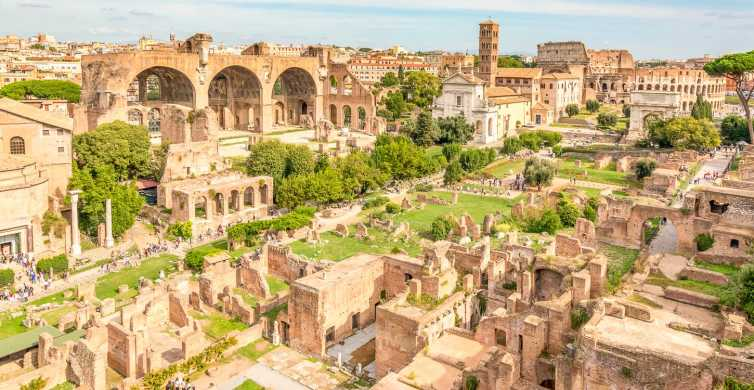 Skip the Line Tour privato del Colosseo e dell'Antica Roma