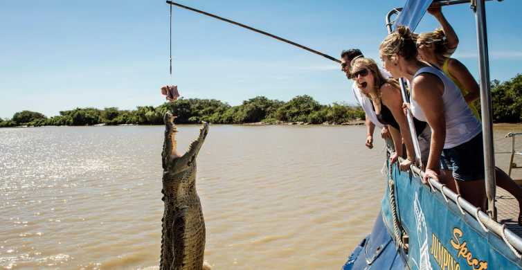 Darwin: City Sights and Jumping Crocodile Cruise