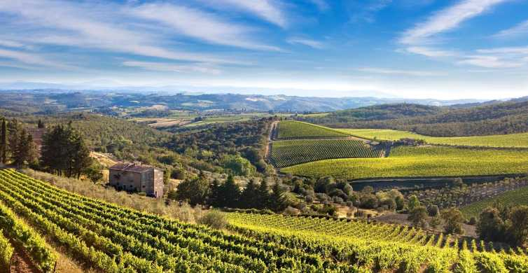 From Livorno: Chianti Lovers Tour with Lunch