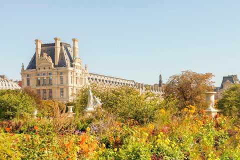 Lifestyle Tour Around the Louvre