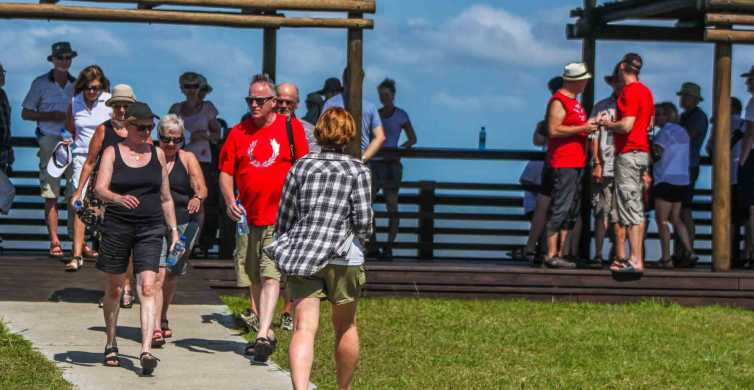 St Lucia: iSimangaliso Wetland Park: Full-Day / Half-Day Tour