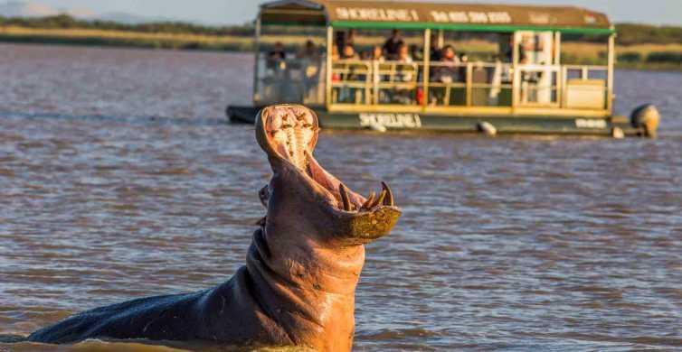 St Lucia: Hippo en Crocodile Cruise op een schip met 15 zitplaatsen