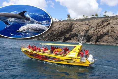 Lanzarote: Lobos Island Half-Day Dolphin Watching Trip