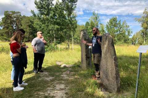 De Stockholm: visite d'une journée complète de la culture viking en petit groupe