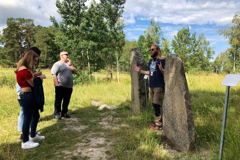 Kleingruppentour ab Stockholm: Kultur der Wikinger