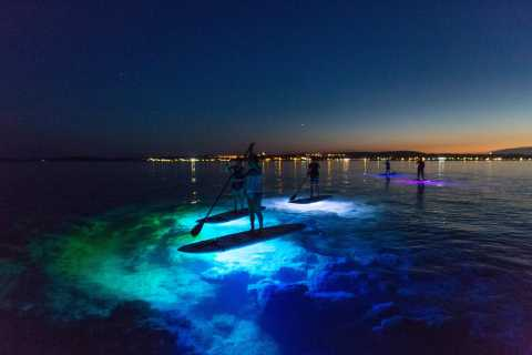 Medulin: Stand-up Paddle Boarding Evening Glow Tour