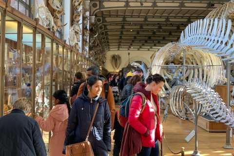Paris: Tour Dinossauro em Família no Museu de História Natural