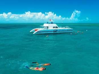 Key West: 2 Schnorchelstopps am Riff