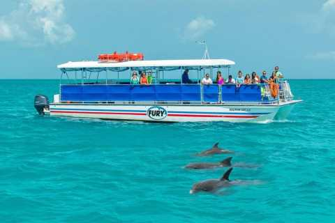 Key West Dolphin Watch and Snorkel Eco Tour
