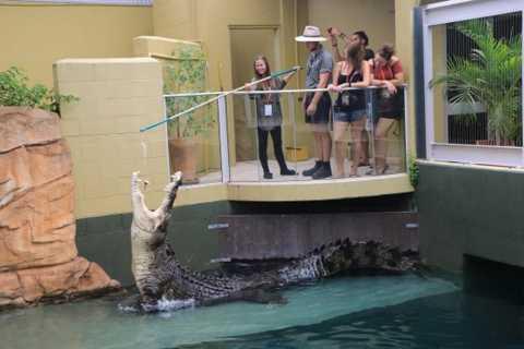 Darwin: VIP Crocosaurus Cove Experience