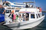 Sorrento: Capri Mini Cruise Transfer Ticket