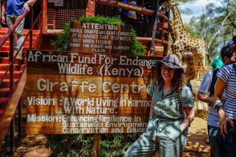 Giraffe, Elephant Orphanage & Bomas of Kenya Day Tour