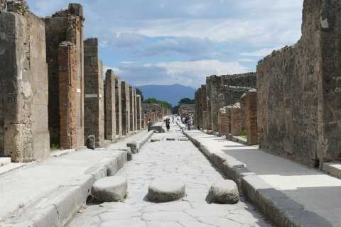 Sorrento: Pompeii and Mount Vesuvius Tour with Skip-the-line