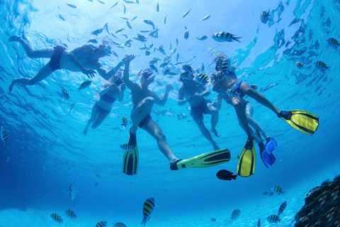 Nassau: 1-Hour Bahamas Snorkeling Adventure