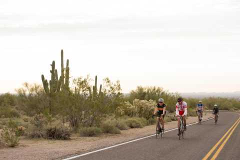 Scottsdale: Half-Day Road Bike Tour