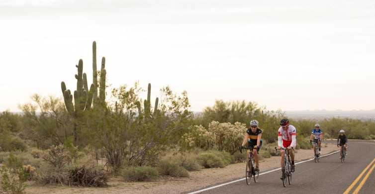 Scottsdale: Half-Day Road Bike Tour