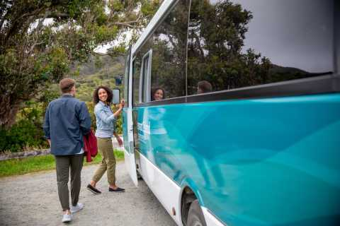Stewart Island: Village and Bays Tour