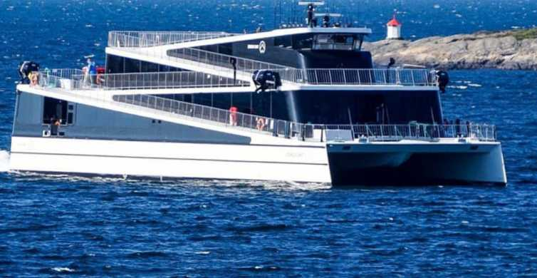 Oslo: Scenic Fjord Cruise on Modern Hybrid Boat