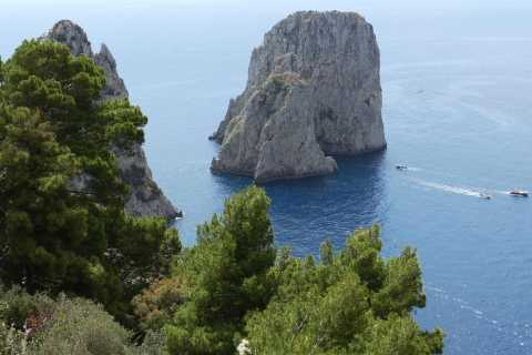 From Sorrento: Capri Afternoon and Evening Tour