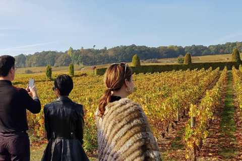 From Reims: Exclusive Tour to Moet et Chandon & Taittinger
