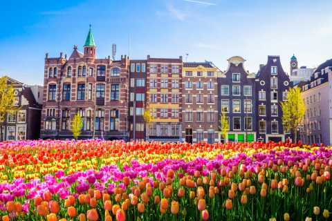 Amsterdam: 2-hour Guided Walking Tour