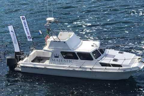 Hermanus: Walker Bay Coastline Cruise