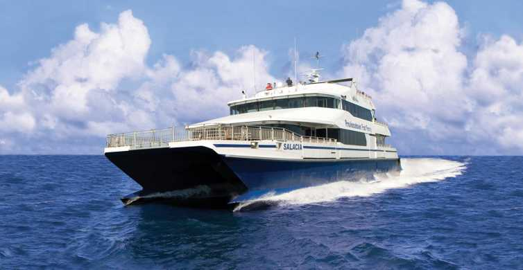 Cape Cod Fast Ferry from Boston: One-Way or Round Trip
