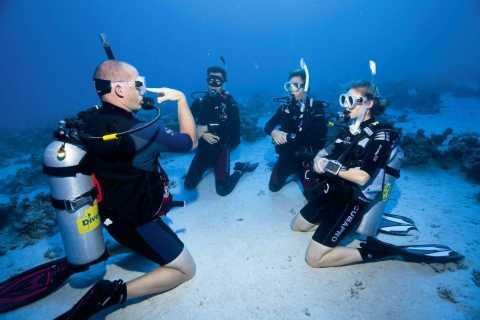 From Dubai: 2-Day PADI Open Water Course in Dibba Fujairah