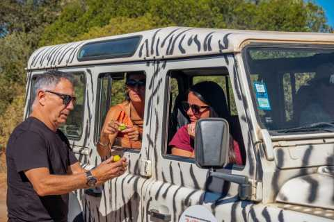 From Albufeira: Silves and Monchique Safari Experience